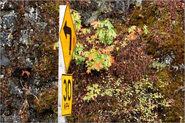 Highway 101 through Humboldt County