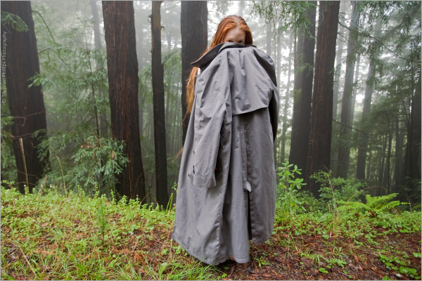 Coy Lass in a Foggy Forest