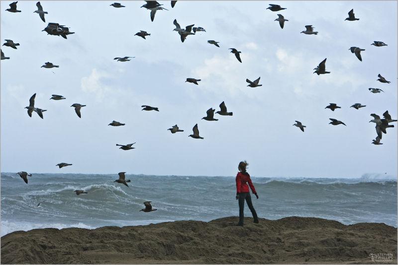 woman on a windy beach with sea gulls