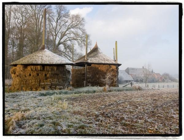 Dutch farm in winter landscape