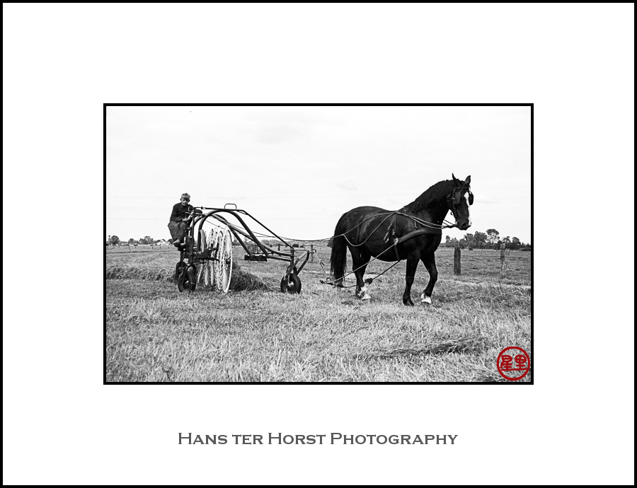 Vintage: No need for a tractor