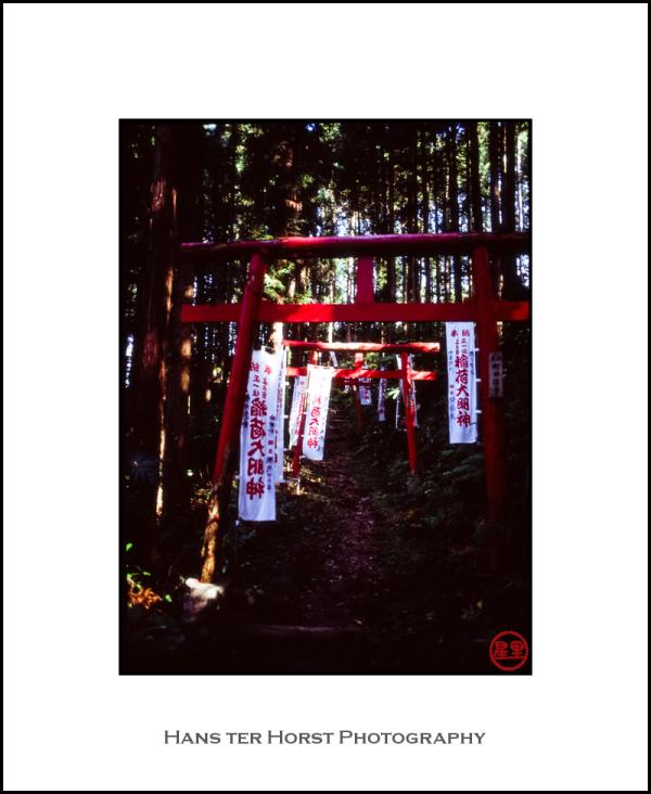 Entrance to Shinto shrine, Chichibu