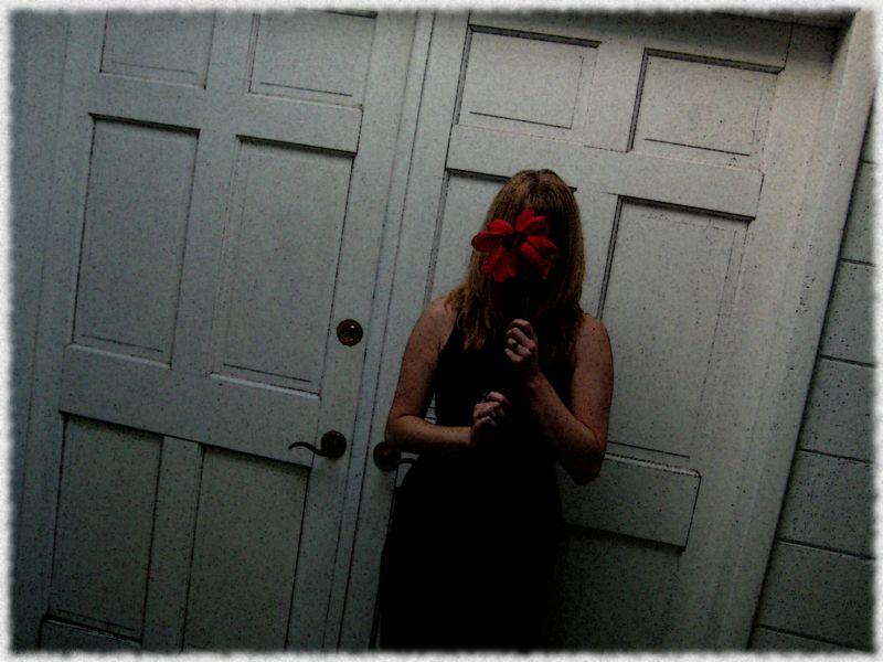 Doors and Poinsettia