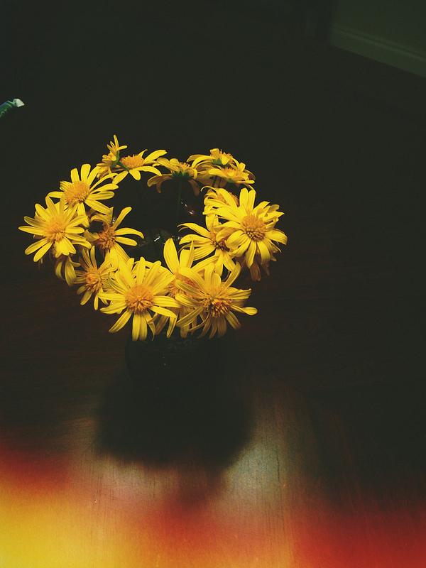 a flower harvest