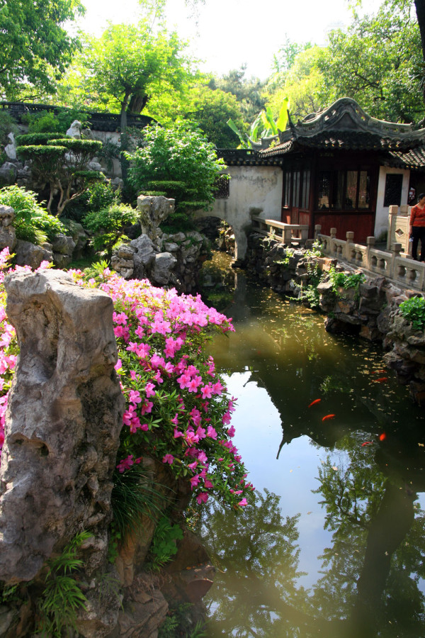 Yunnan Garden (3)
