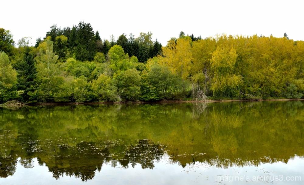 parure d'automne....................