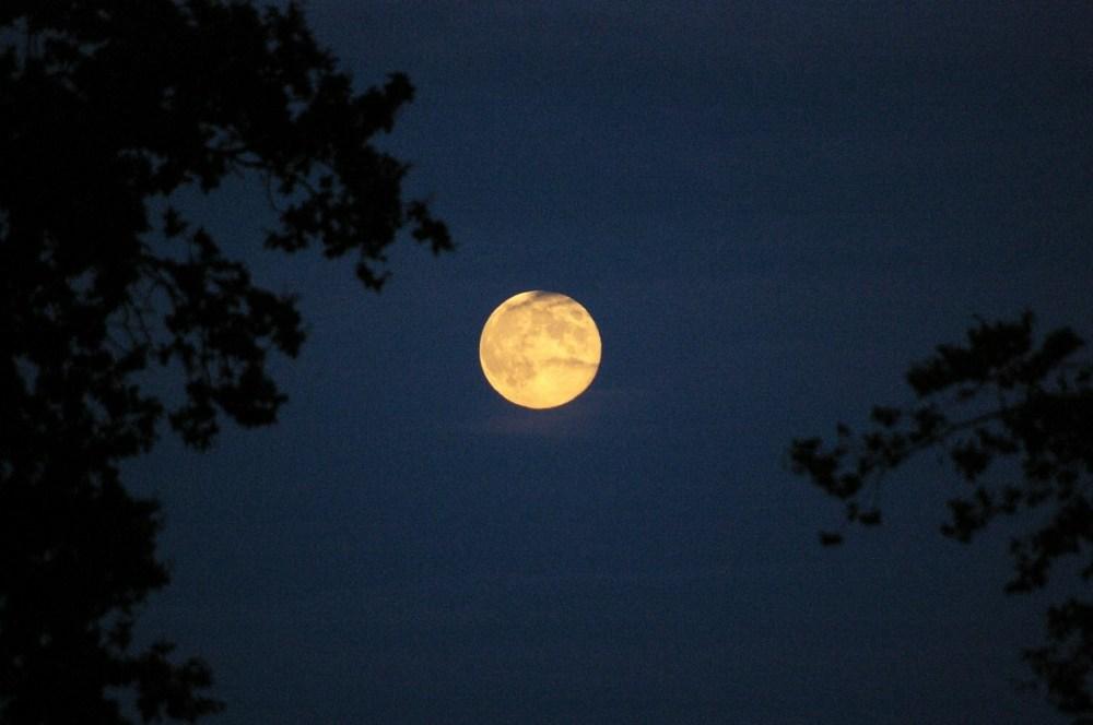 lune moon