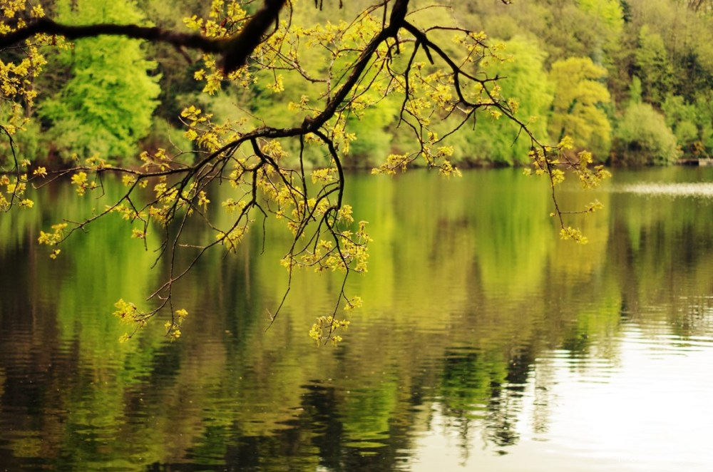 Lac de Vezins