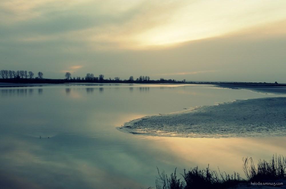 Reflet sur Baie