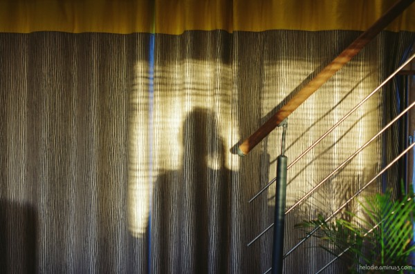Autoportrait au rideau rayé