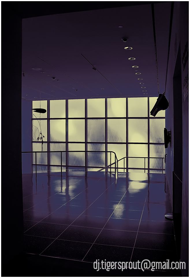 a Soft Pool of Indoor Light, MoMA NYC