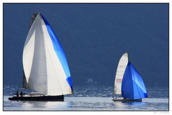 Sailing boats on the Geneva Lake (Lac Léman)