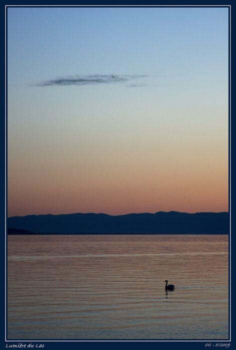 Lumière du Lac - Lac Léman au soir