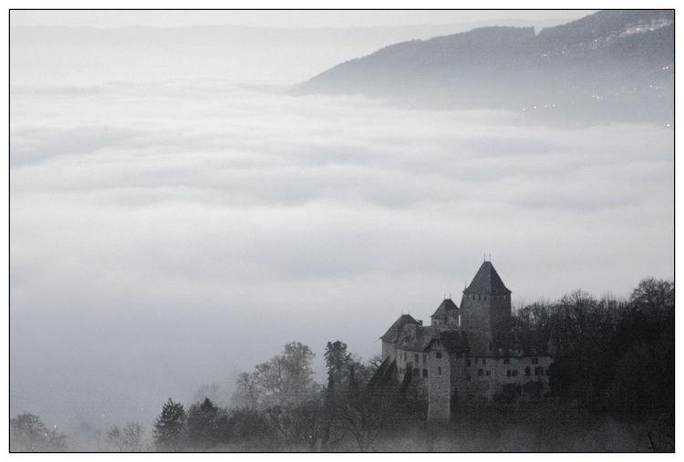 Castle in the fog (Blonay)