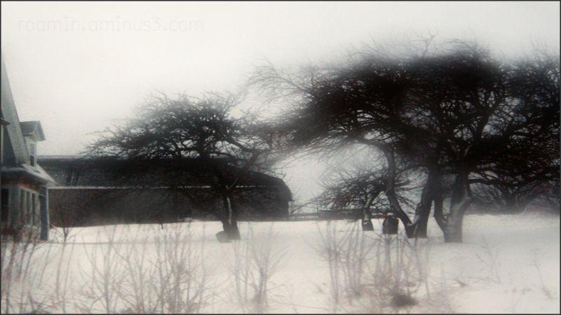 winter barn sky clouds snow roamin farm house
