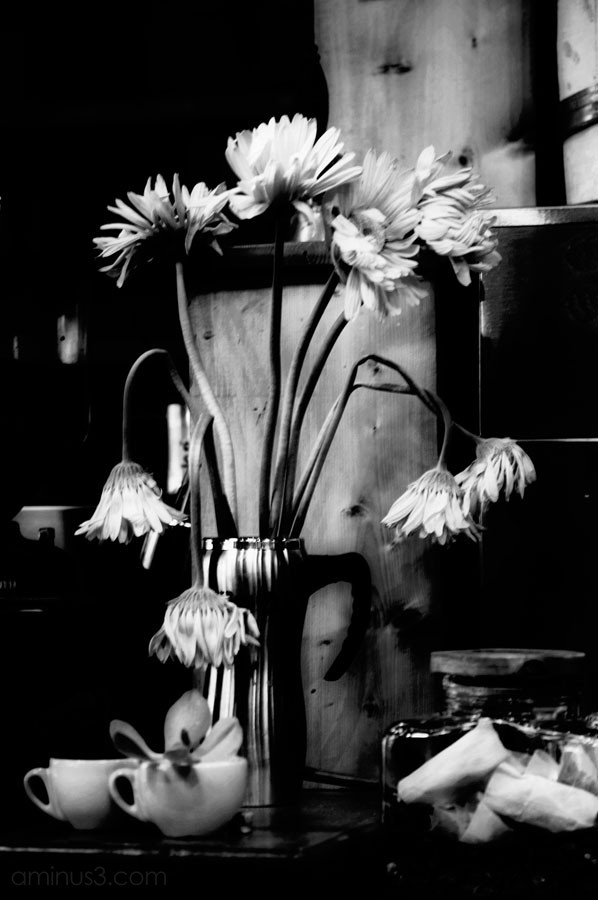 drooping flowers in a cafe