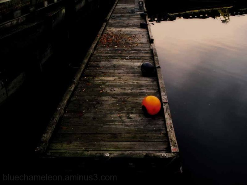 Two colour floats on an old dock