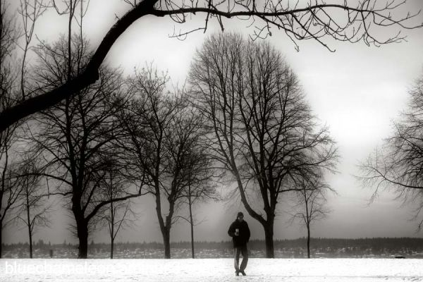 when loneliness turns to silence