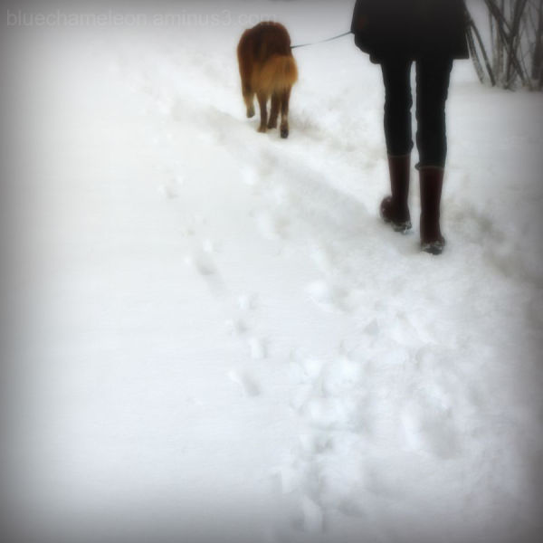 A woman walks her dog through the snow