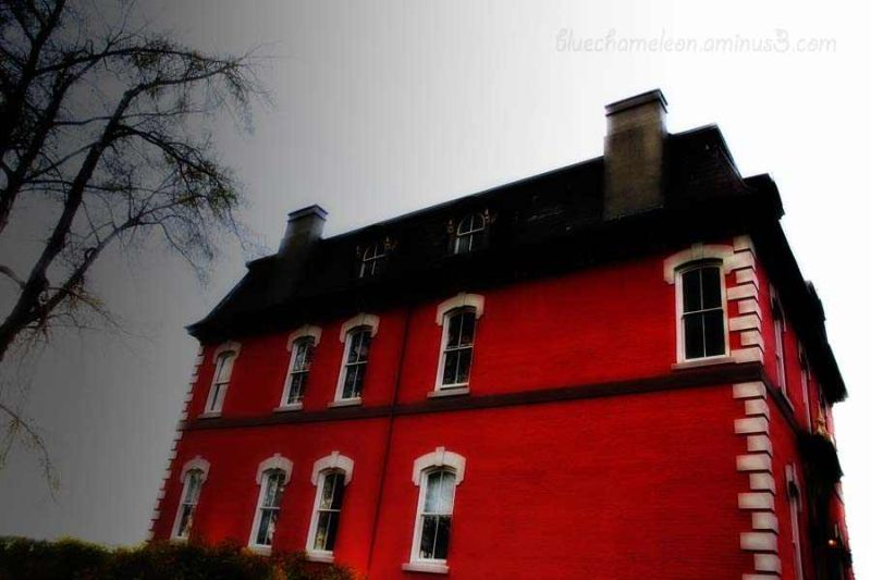 A lone red brick house at an angle, bare branches