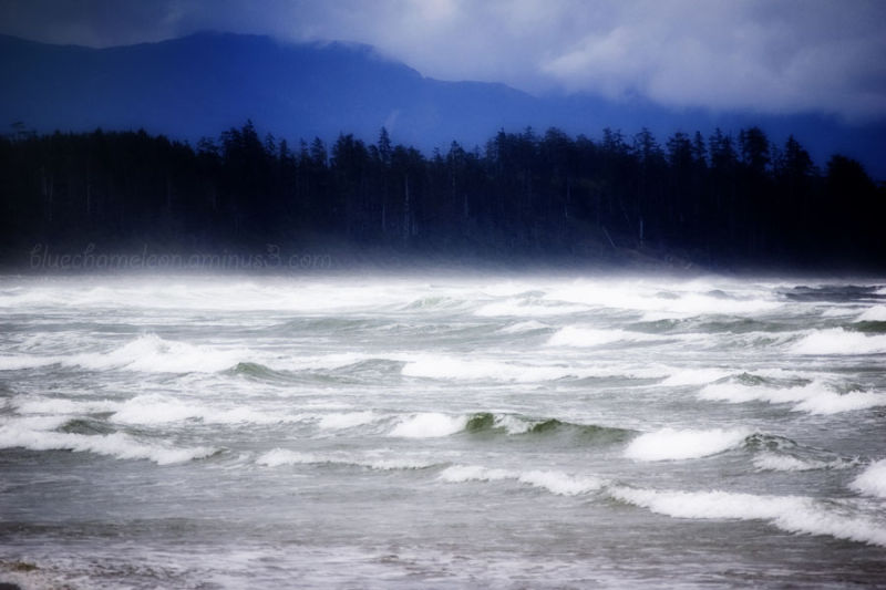 A storm over the pacific ocean, waves, wind, mist