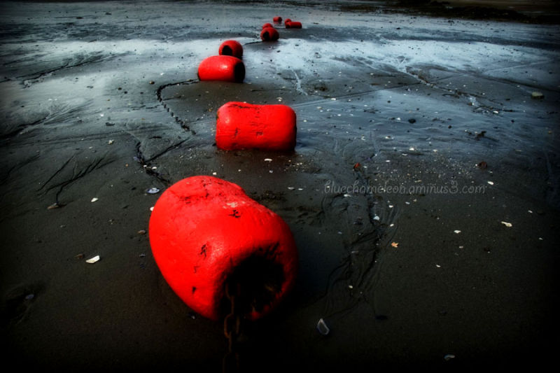 Red floats chained together grounded on beach