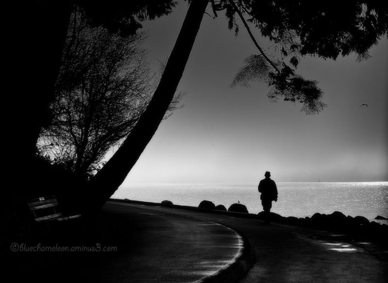 A silhouetted man walking into sun & fog at ocean