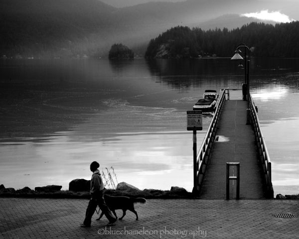 A man & dog walking along water line with fog