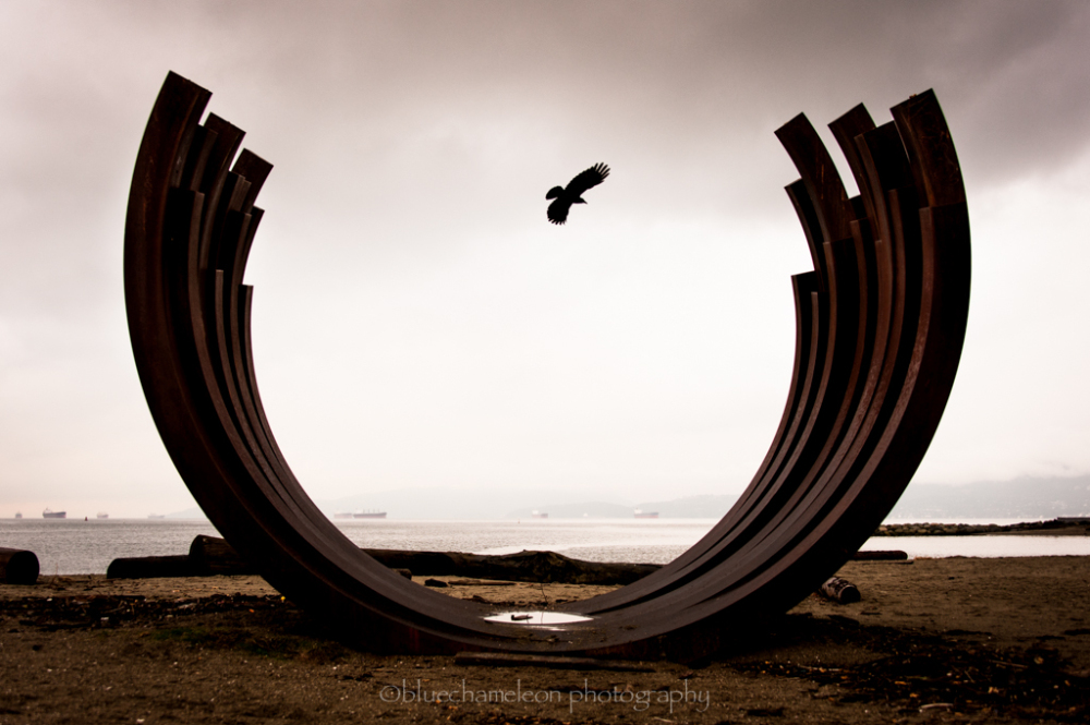 A crow flying through a sculpture of whale ribs