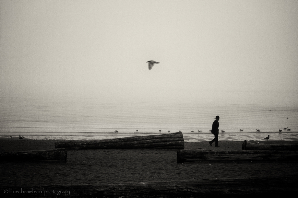 Silhouetted man in hat with bird flying at beach