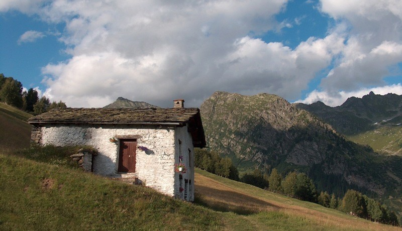 Presque berger