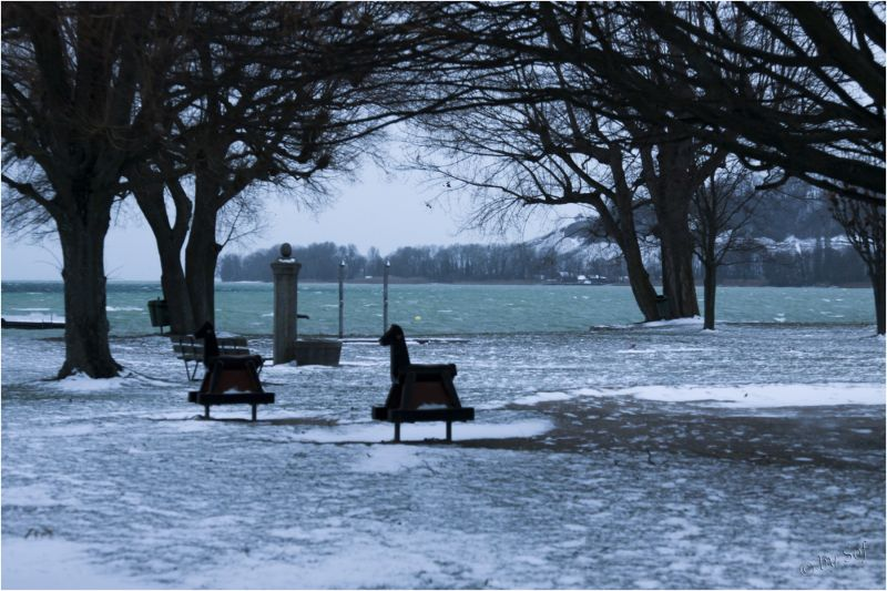 Ambiance glaciale (3)