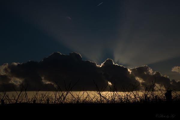 Lumière d'un soir