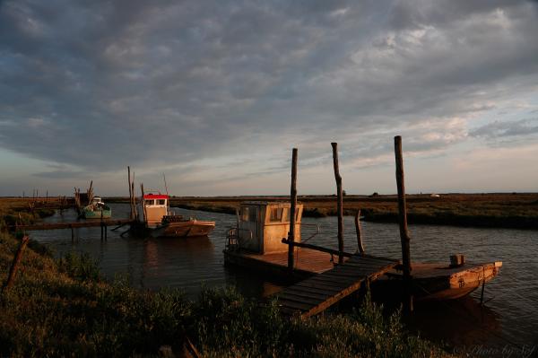 Voyage en Charente Maritime (4)