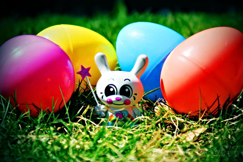 easter dunny!