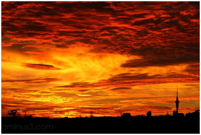 Sunrise over Auckland