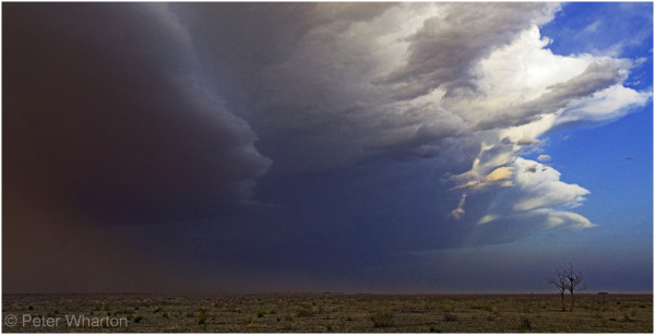 thunderstorm near Portales, New Mexico