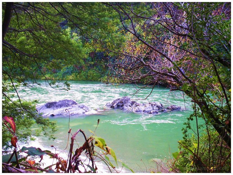 Buller River