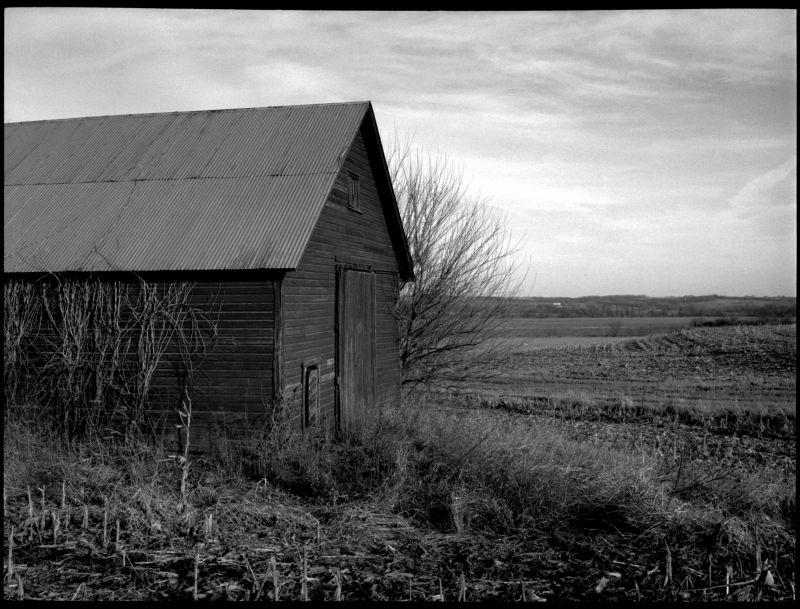barn and field - iola, ks - b&w photo