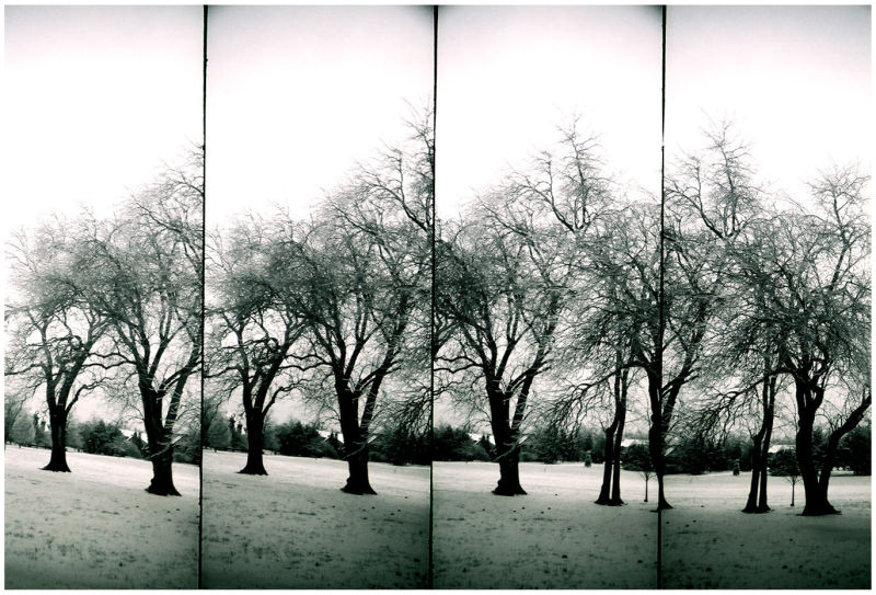 park in snow - lomo supersampler - b&w