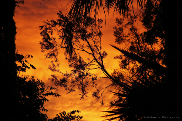 Blood sky... a prayer