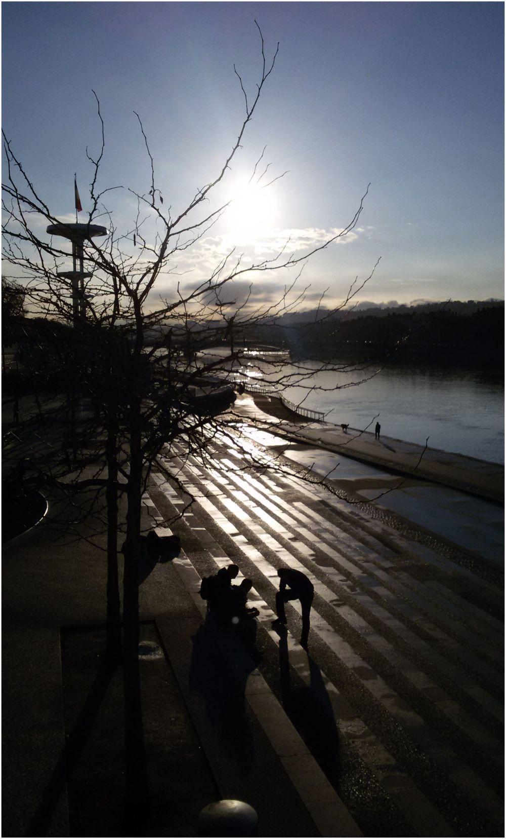 sun winter Lyon