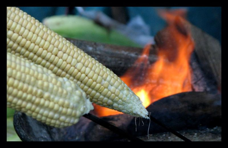 Bhutta, Corn, Flame Fire  Punit Parikh
