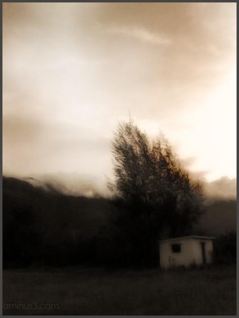 Cottage on a farm