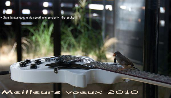 2010 année musicale et bonheur