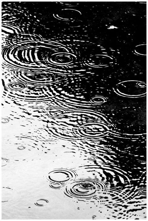 a monochrome image of rain.