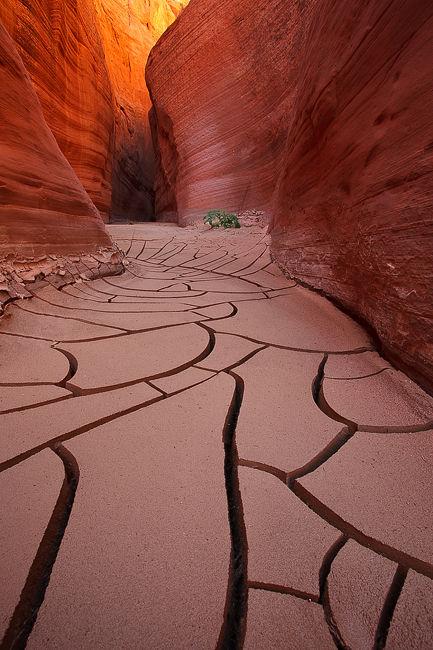Paria slot canyon