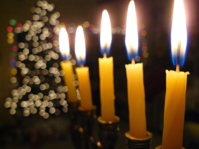 Menorrah and Christmas tree share the same home