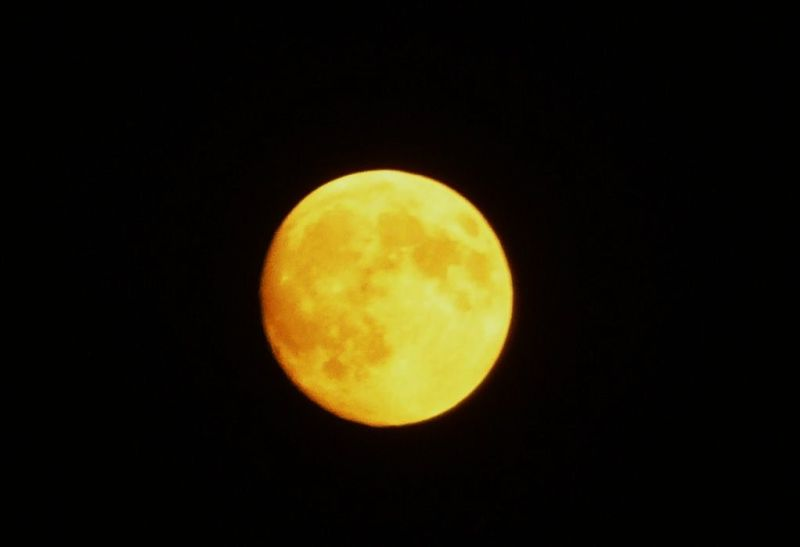 Station Fire Moon looks like a Harvest Moon