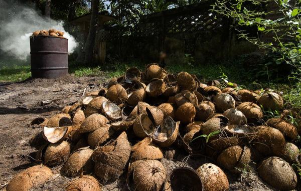 houtskool charcoal coconut kokosnoot Samui